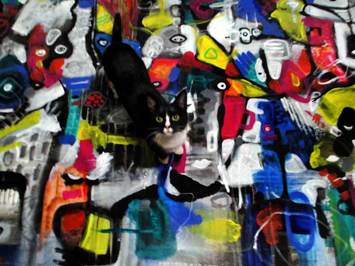 kat og kunst find a cat