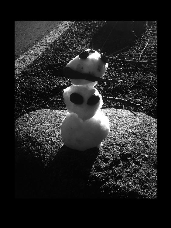 1 life of a snowman 1 fotohistorie by helen kholin