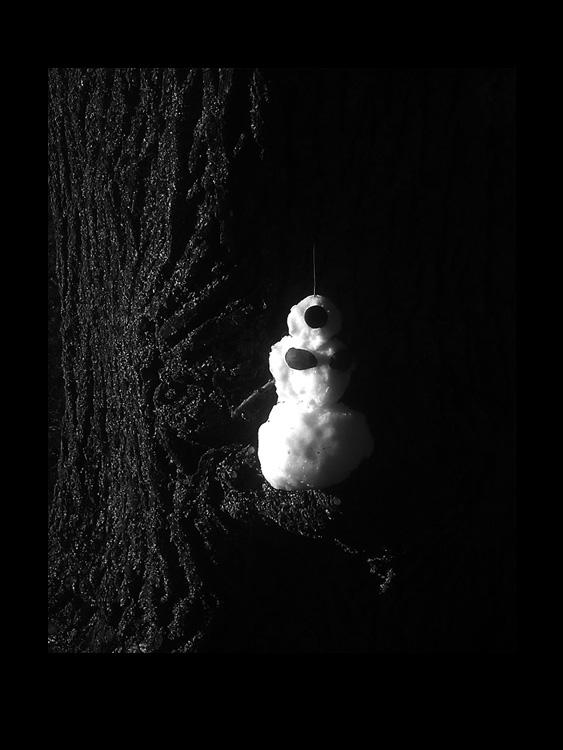 5 life of a snowman fotohistorie by helen kholin